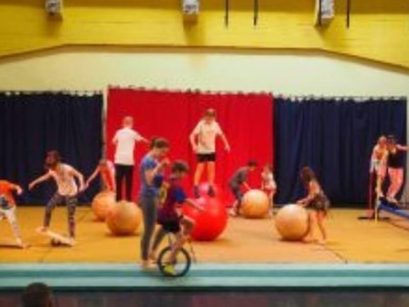 Verslag excursie klas 1B: Circus Rotje Knorr